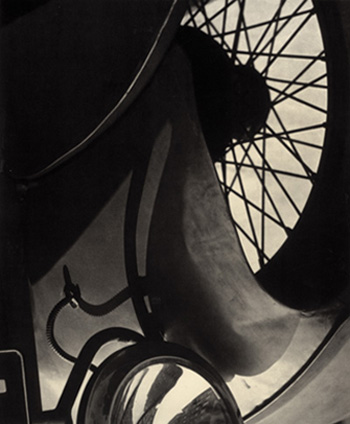 Stieglitz - Wire Wheel